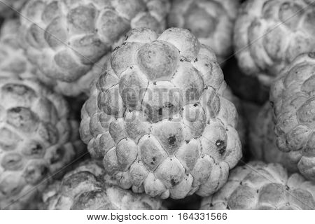 Black and White Fresh Custard apple fruit in the market natural fruit background