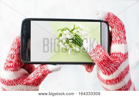 Hands in gloves taking a photo of Snowdrops bouquet