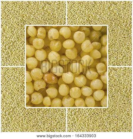 Collage consisting of millet grains. Food background. Healthy lifestyle concept. Yellow pattern. Closeup macro shot.