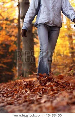 Autumn / Fall - young woman walking in forest in lovely fall colors