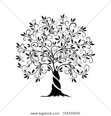 Olive tree outline curl silhouette icon isolated on white background. Web graphics stroke modern vector sign.Premium quality illustration logo design concept pictogram.