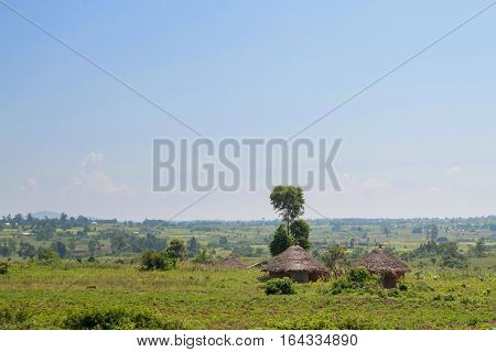 Rural African landscape of countryside with traditional huts in Kenya