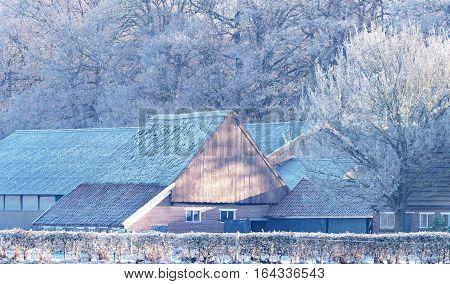 Stables With Trees In Winter. Geesteren. Achterhoek. Gelderland. The Netherlands.