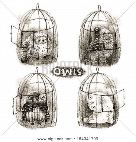 Four cute cartoon owls sitting in their cages with opened doors. In pastel technique. Isolated on white. Original high resolution graphic artwork.