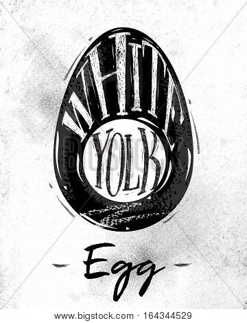 Poster egg cutting scheme lettering white yolk in vintage style drawing on dirty paper background