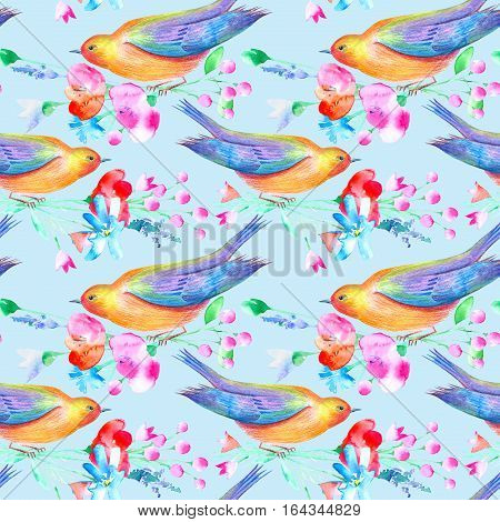 Seamless pattern of a bird and flowers. Poppy, bluebell, lavender, cornflower, berry, chamomile and daisy. Watercolor hand drawn illustration.Blue background.