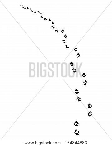 Black footprints of dogs on a white background, turning left