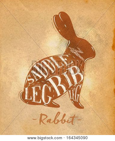 Poster rabbit cutting scheme lettering saddle leg rib in retro style drawing on craft paper background
