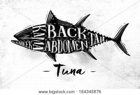 Poster tuna cutting scheme lettering cheek kama abdomen back tail in vintage style drawing on dirty paper background