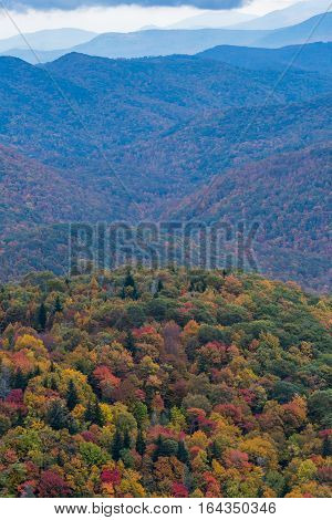 Changing Leaves And Rolling Mountains