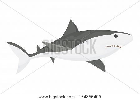 Vector illustration toothy white swimming angry shark. Animal sea isolated character underwater cute marine wildlife mascot. Scary smile cool evil monster funny predator.