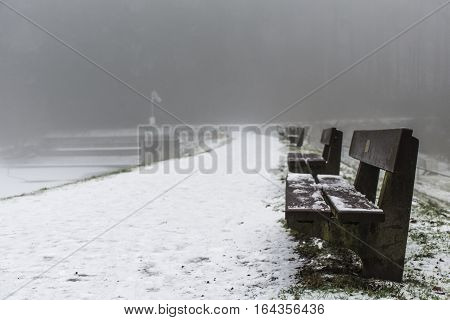 Bench Empty Seat In Wood Trees Winter And Fog 6