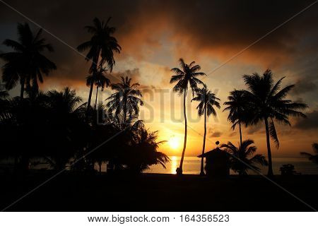 Coconut beach sunrise at Ang Thong island,Thailand.