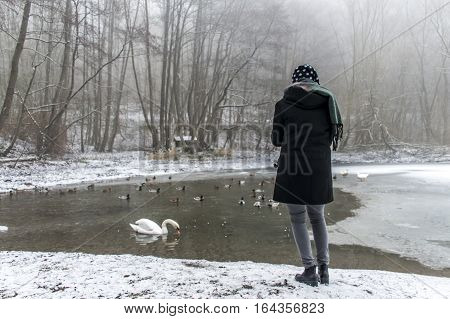Woman Feeding Lake Swans Ducks Bird Feed Winter