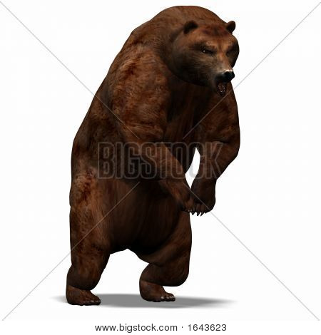 The big brown bear gets ready for the attack poster