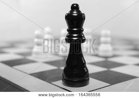 Chess piece to play a chess game on the checkered board.