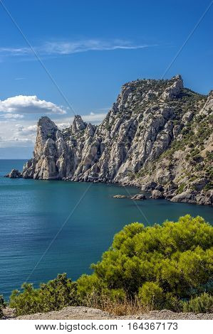 Russia the Crimean peninsula the village of New World surroundings. The territory of the nature reserve with relict pines and junipers.