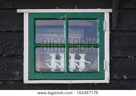 Four dancing cows behind the window of an old house.