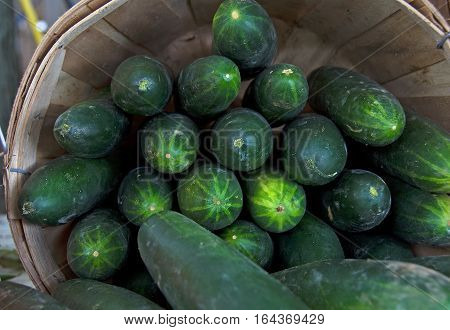cucumbers stacked in wooden bushel basket at the market