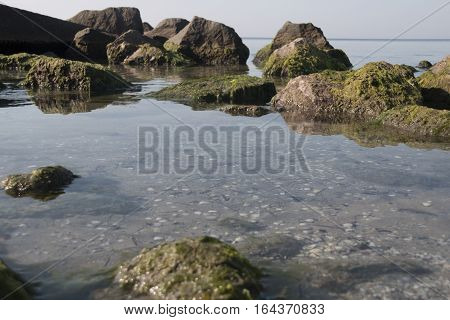 rocky shore by the sea, view of a rocky coast in the morning.