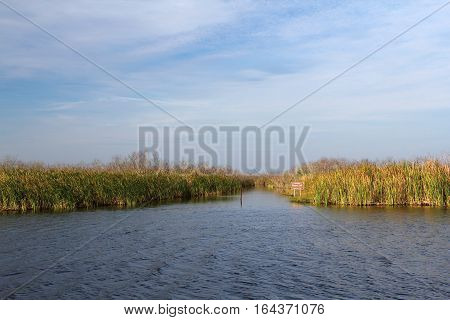 Loxahatchee National Wildlife Refuge in the Florida Everglades