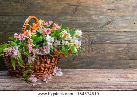 Alstroemeria Flowers In Basket