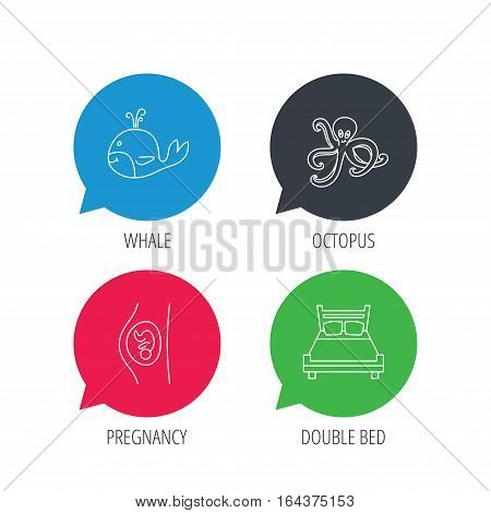 Colored speech bubbles. Whale, octopus and double bed  icons. Pregnancy linear sign. Flat web buttons with linear icons. Vector