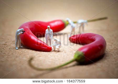 Team of criminalists inspecting red chili peppers.