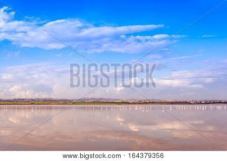 View of the Salt Lake in Larnaca Cyprus.