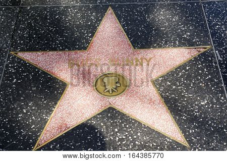 LOS ANGELES CALIFORNIA USA- JUN 01 2015 - bugs bunny's star at the Hollywood's Walk of Fame