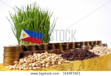 Philippines Flag Waving With Stack Of Money Coins And Piles Of Wheat And Rice Seeds