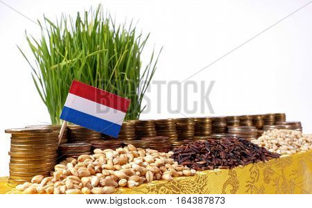 Netherlands Flag Waving With Stack Of Money Coins And Piles Of Wheat And Rice Seeds