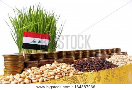 Iraq Flag Waving With Stack Of Money Coins And Piles Of Wheat And Rice Seeds