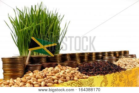 Jamaica Flag Waving With Stack Of Money Coins And Piles Of Wheat And Rice Seeds