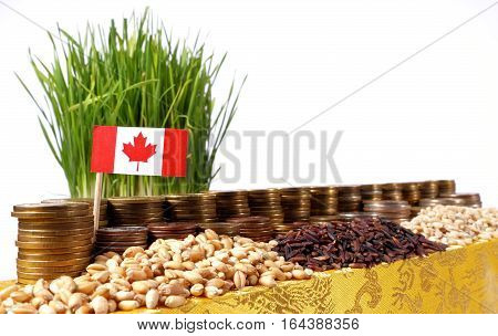Canada Flag Waving With Stack Of Money Coins And Piles Of Wheat And Rice Seeds