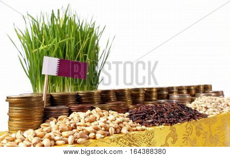 Qatar Flag Waving With Stack Of Money Coins And Piles Of Wheat And Rice Seeds