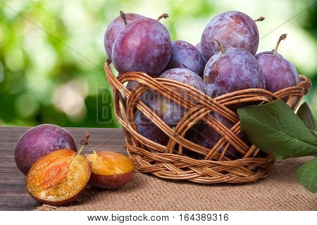 plums in a wicker basket on the wooden table with sackcloth and blurred green background.