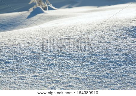 abstract white blue background from snow shiny in sun.wintry day