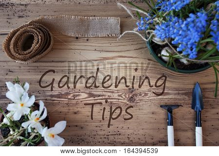 English Text Gardening Tips. Spring Flowers Like Grape Hyacinth And Crocus. Gardening Tools Like Rake And Shovel. Hemp Fabric Ribbon. Aged Wooden Background
