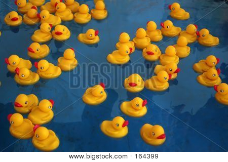 Rubber Ducky's