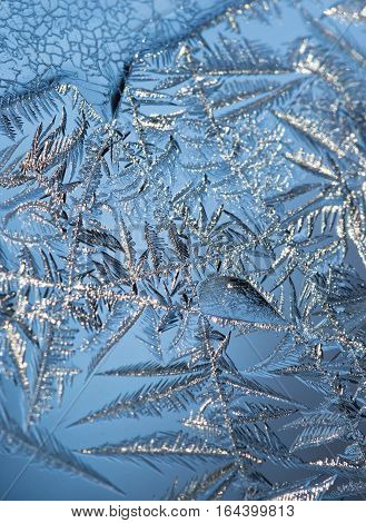 Close up of intricate textured ice crystals on a window pane with blue sky in the background. Pattern appears leaf like. Photographed in natural light with shallow depth of field.