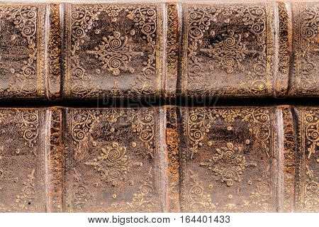 Ancient Books Spines