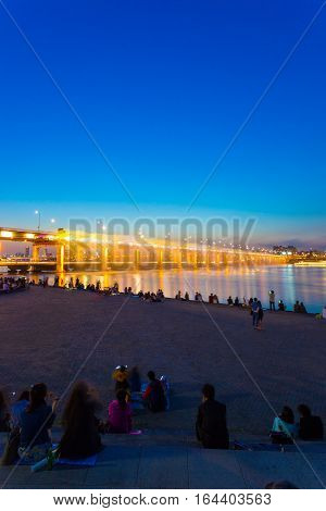Seoul Banpo Bridge Water Light Show Audience V