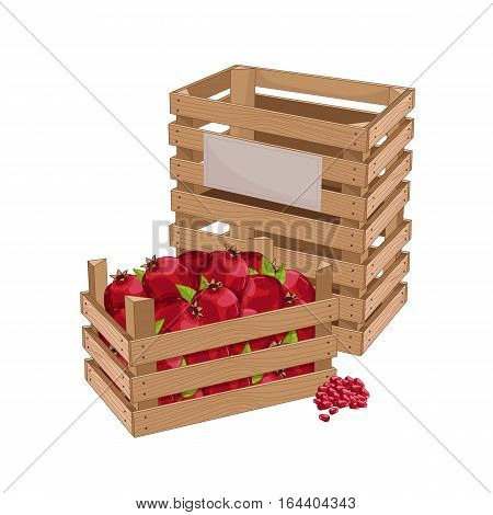 Wooden box full of pomegranate isolated on white background vector illustration. Fresh fruit, organic farming, vegan food, delivery farm product, grocery store. Ripe pomegranate in wooden crate icon.