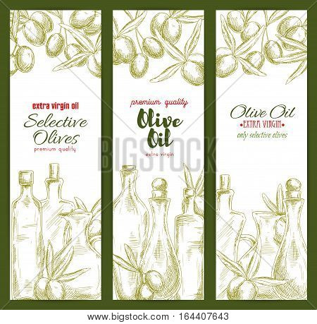 Olive oil banner set with sketched fruit and branches of olive tree and bottles of extra virgin olive oil. Food packaging, healthy nutrition, label design