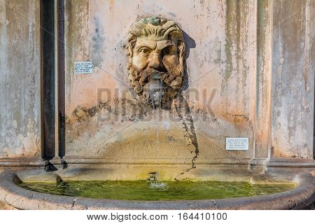 Fontana Della Pigna Or Pinecone Fountain At The Vatican Museums