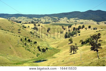 Broad panorama of the countryside in North Gippsland Victoria with green field in foreground. Grassy hills in Australia.