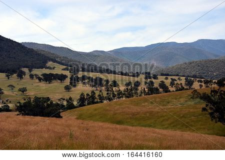 Broad panorama of the countryside in High Country Victoria with green field in foreground. Grassy hills in Australia.
