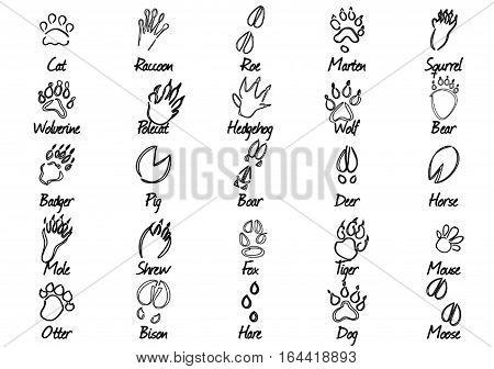 Black-white set of 25 various animal tracks and names