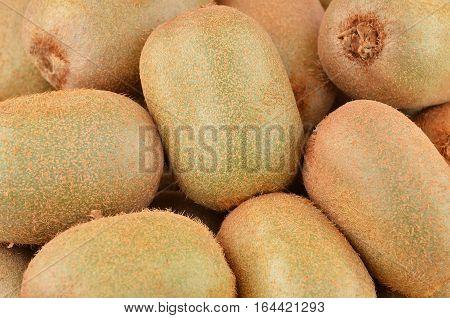 Green kiwi fruit (Actinidia deliciosa) close up shot